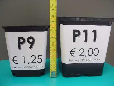 P9 en P11 containers